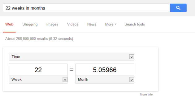 google_month_conversion