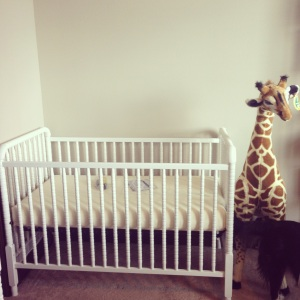 The assembled crib, with the most adorable stuffed giraffe I have ever seen. And the hind quarters of my dog because obviously.